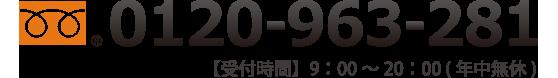 0120-963-281
