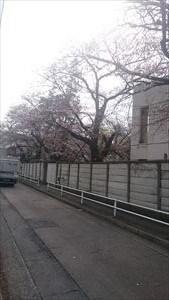東京都瑞穂町での任意売却による物件調査