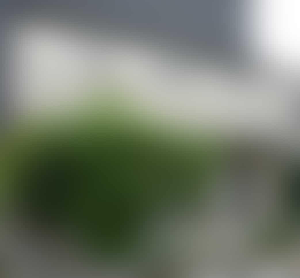 [群馬県高崎市]うつ病で失業、任意売却事例015_建物外観